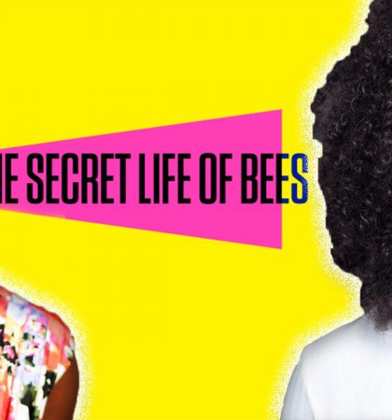 the secret life of bees movie summary